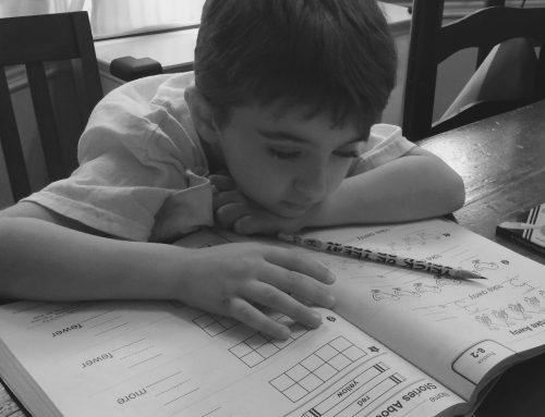 Standardized Tests for the Struggling Student