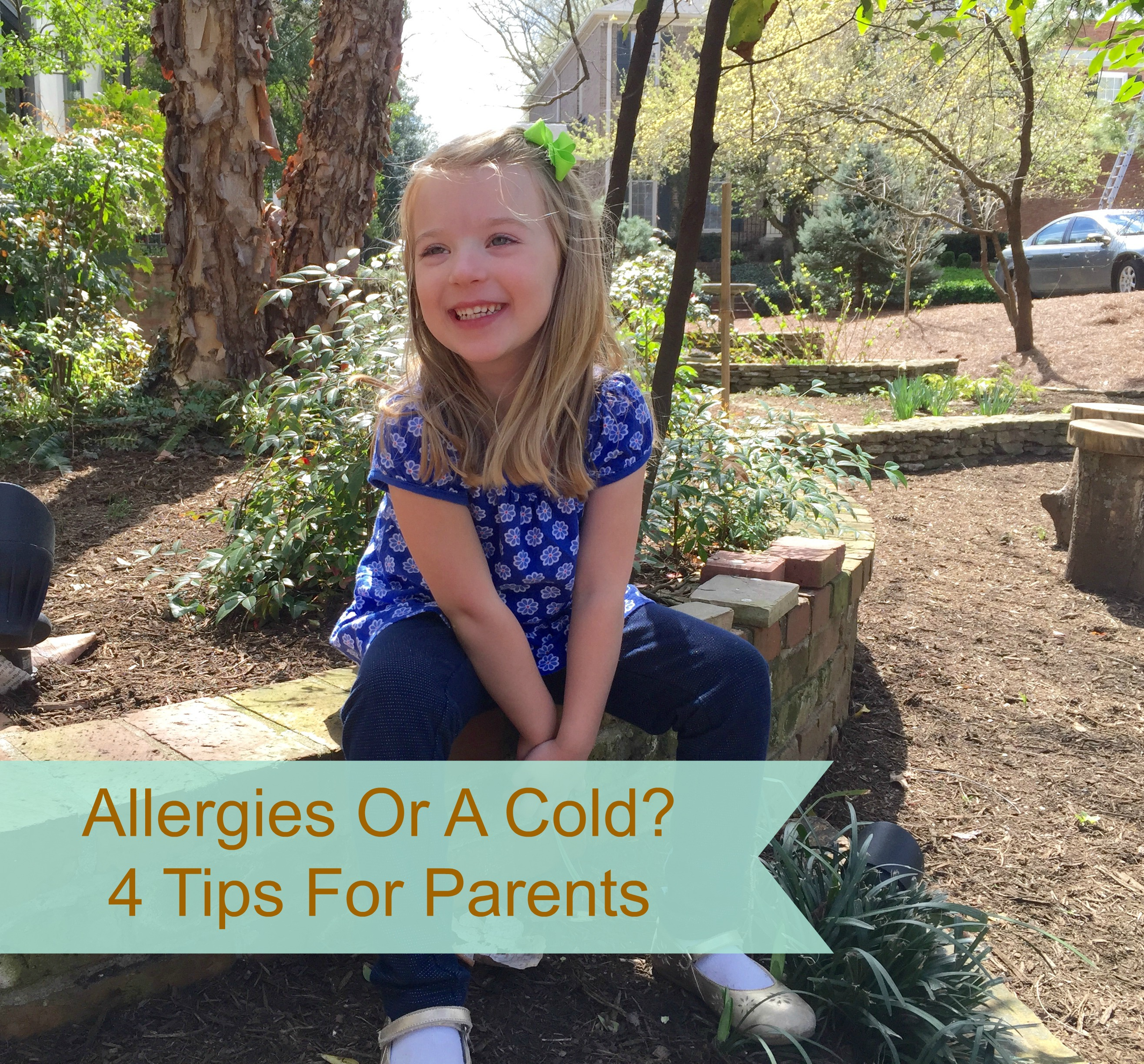 Tips for Parents - Allergies and Colds