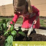 5 Tips for Spring Allergies in Kids